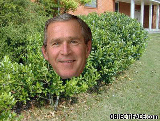 - Its BUSH (george W.)!!!!